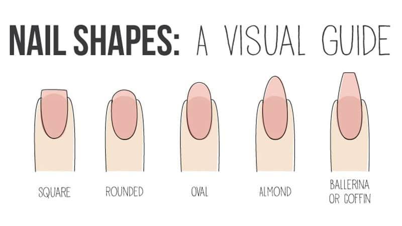 Nail Shape Chart